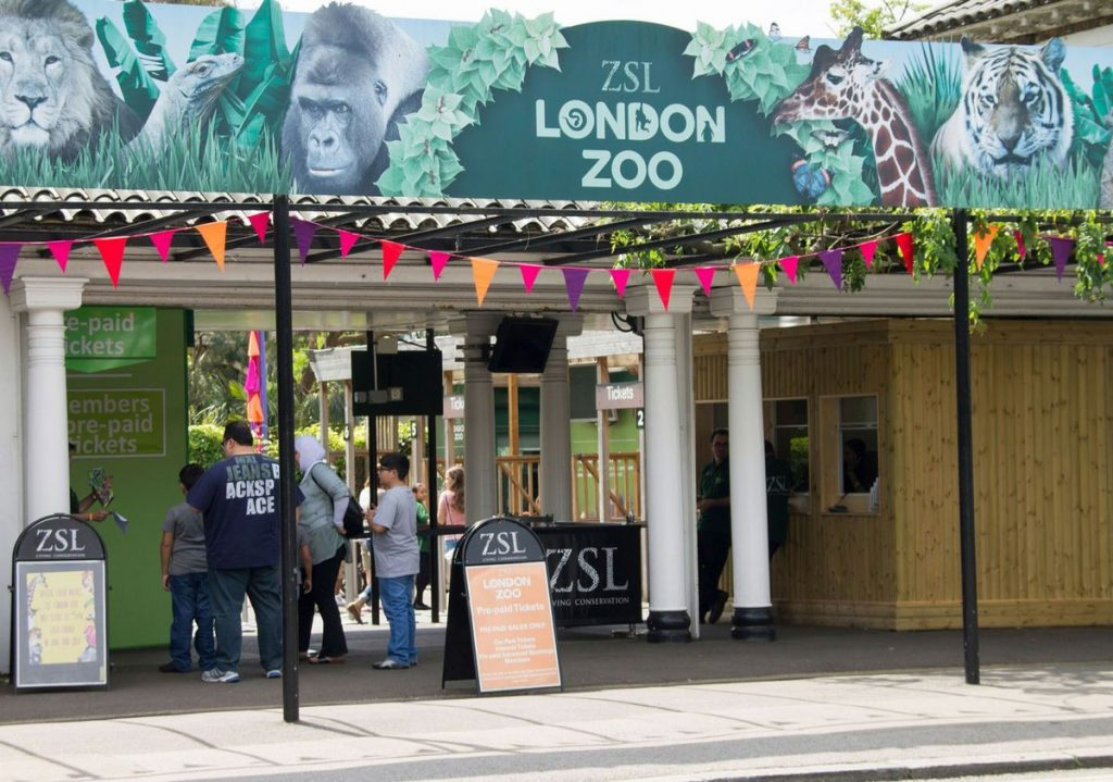 London Zoo Entrance Ticket